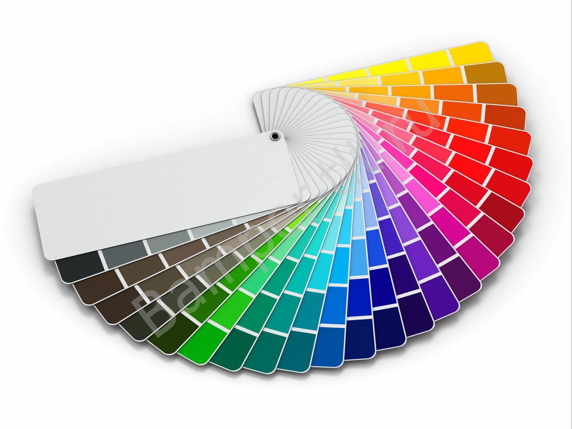 мышцы палетка краски для стен фото картинки для